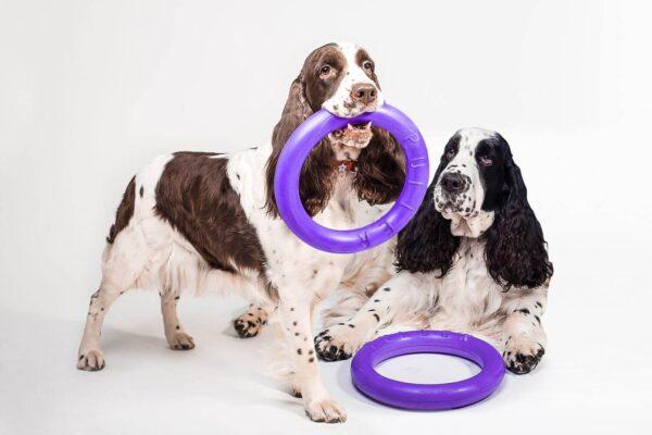 אביזר אימון לכלבים פולר סטנדרט - Puller Standard_13